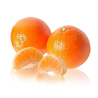 Tangerine 100 g Fruit Puree, Deep-Frozen